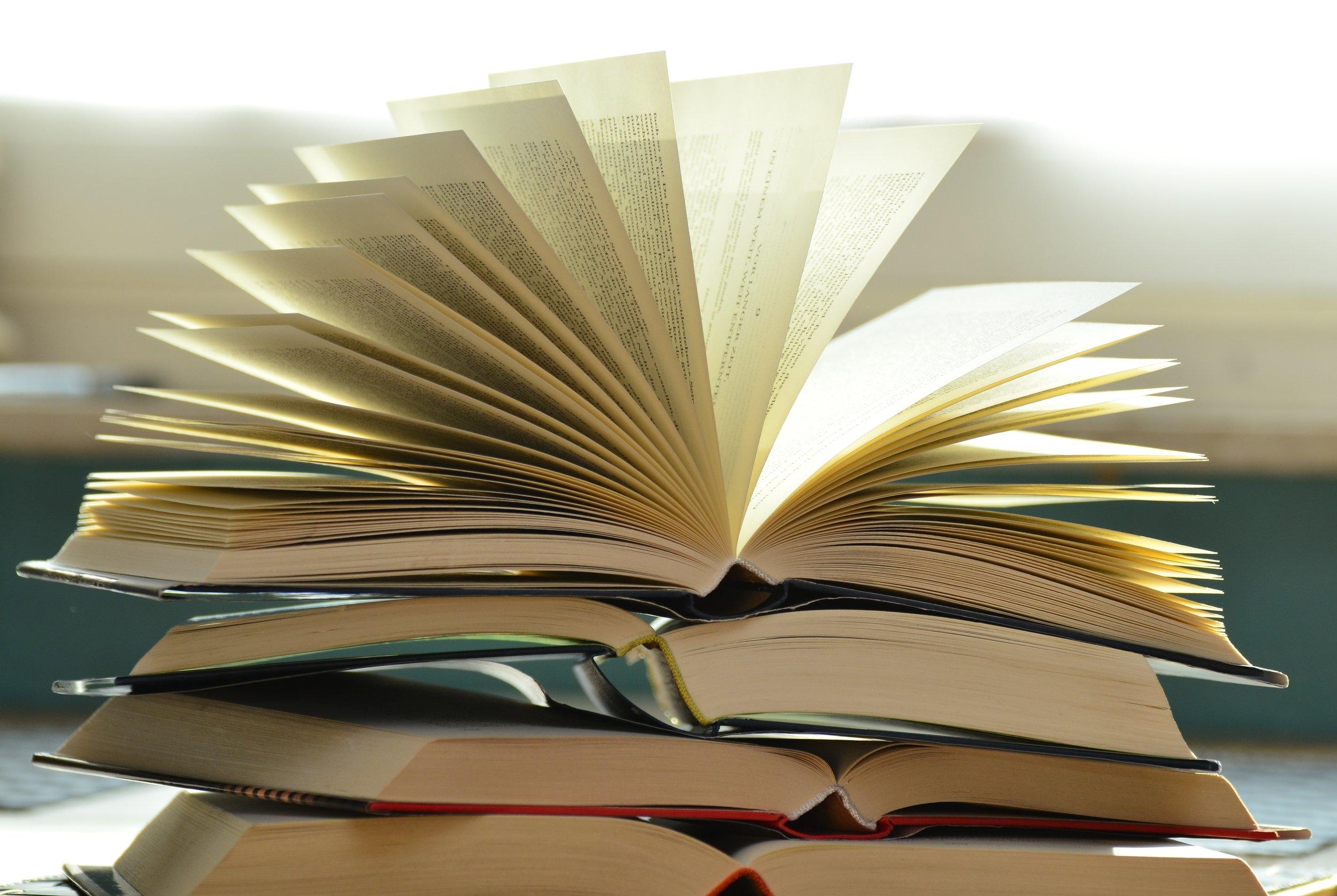 May Book Reviews - Carina Lim '21