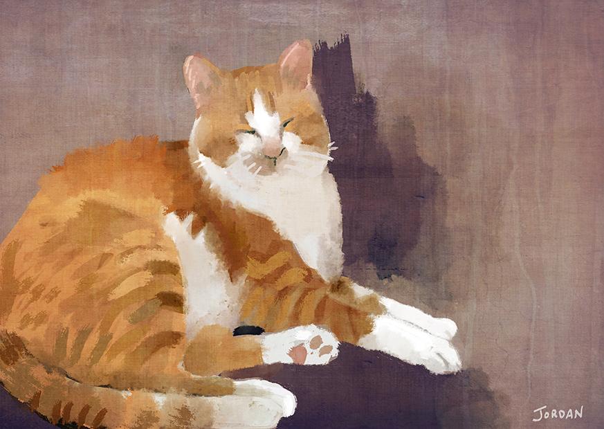 LisaKing_cat.jpg