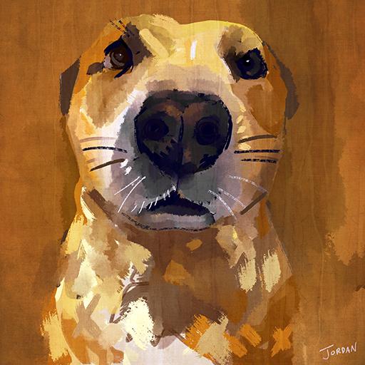 Nickf_dogportraitflat.jpg