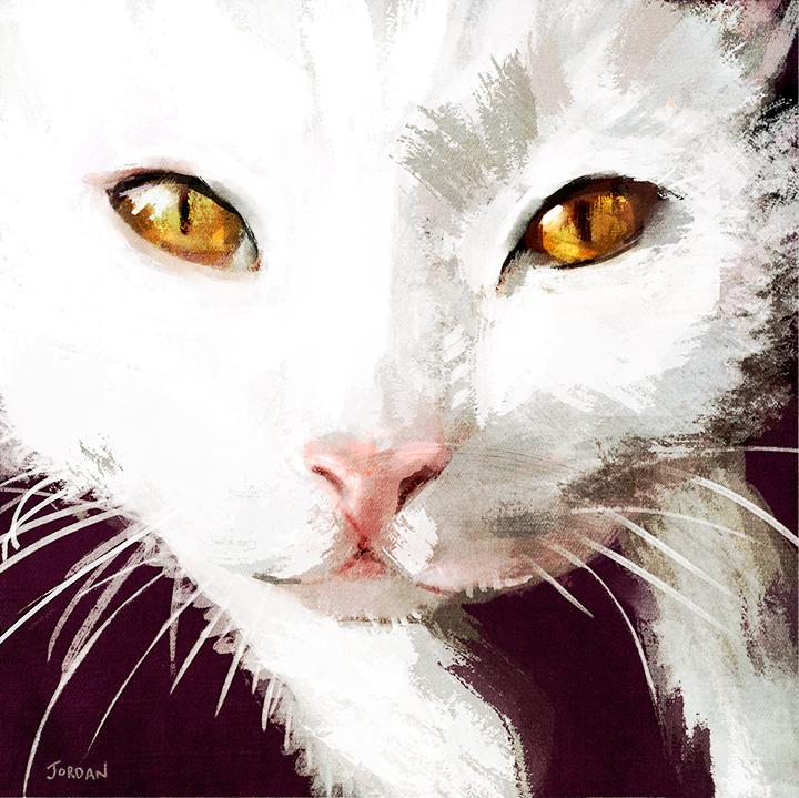 claudiacat3Final.jpg