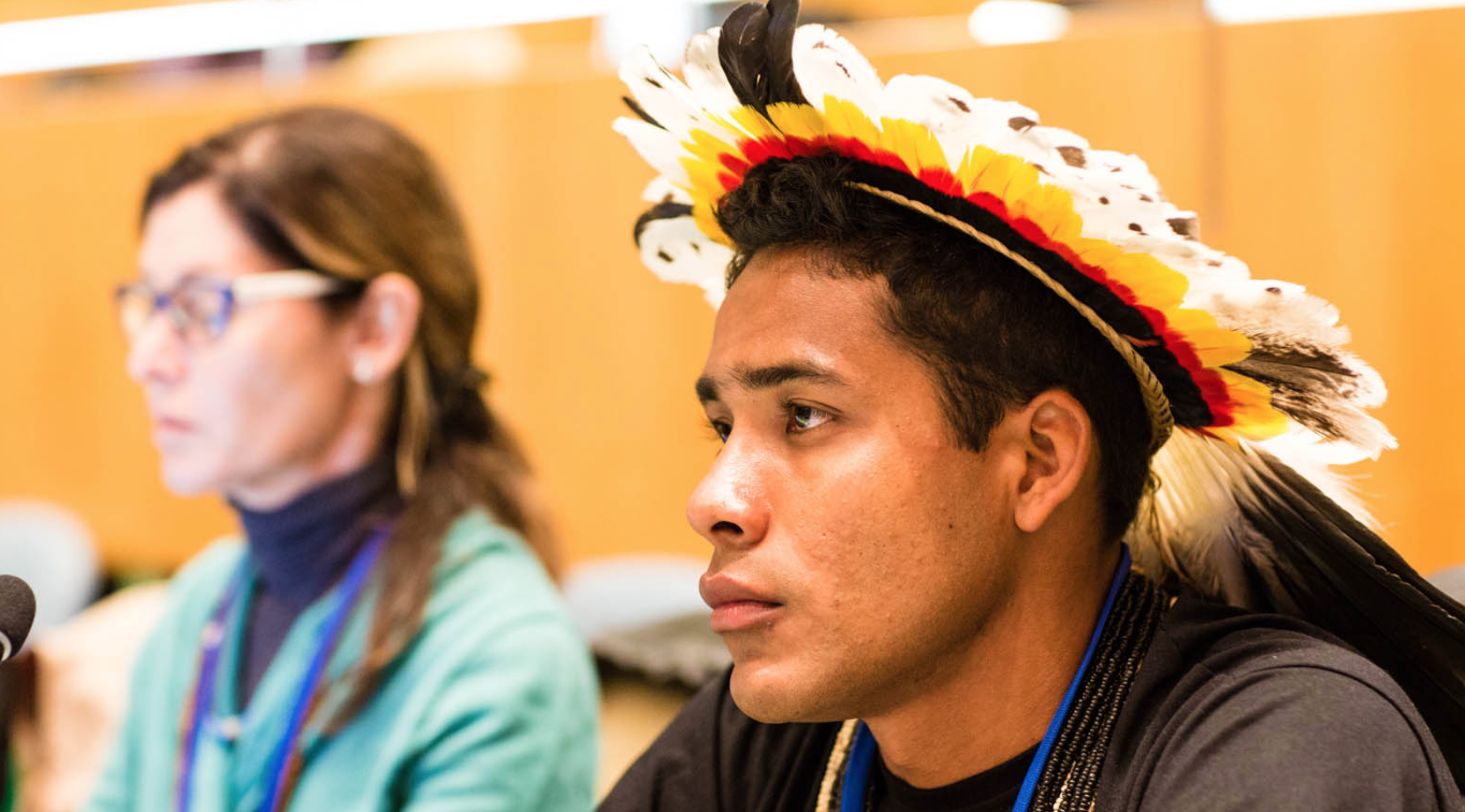 Indigenous Peoples UNPFII.png