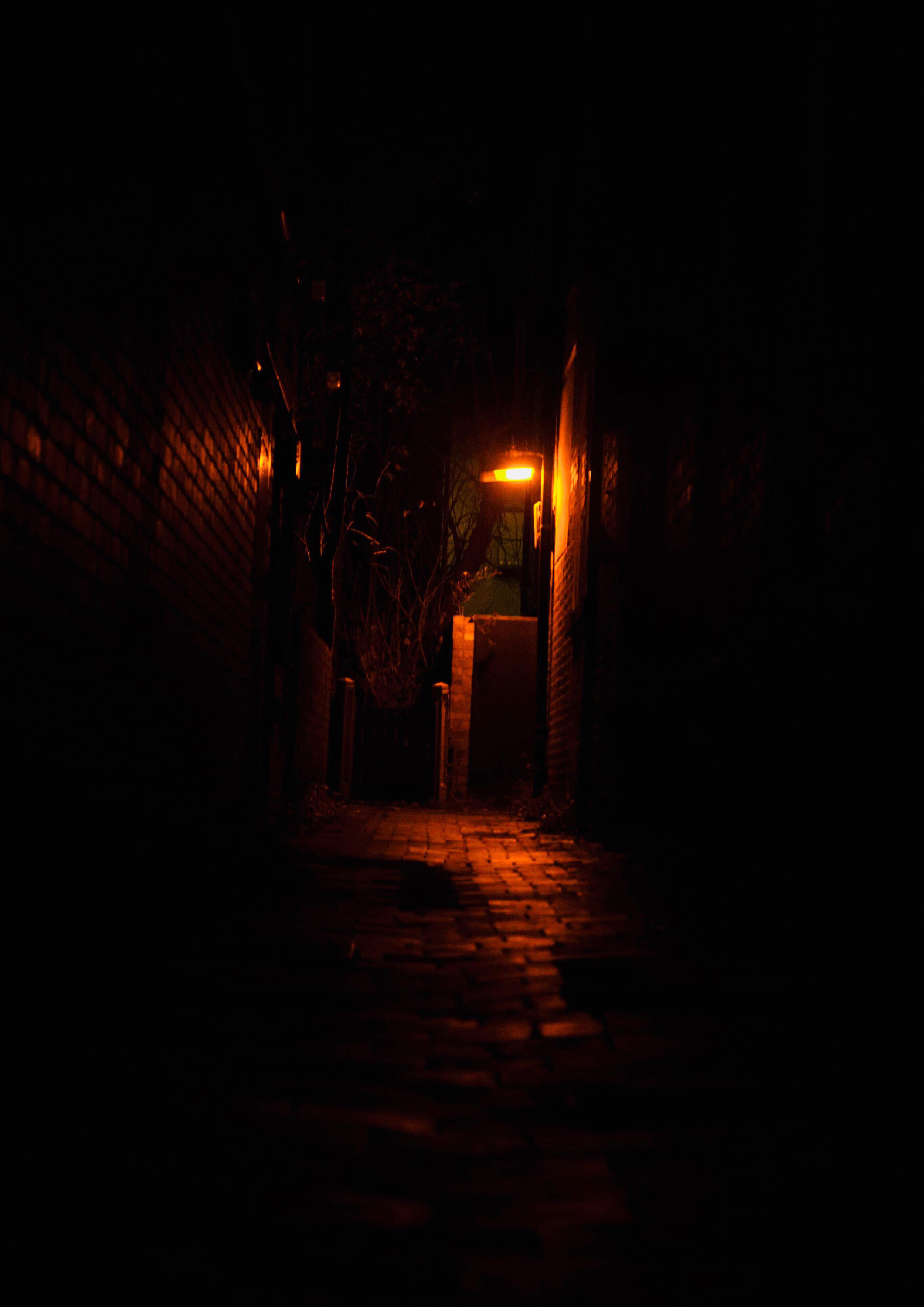 This image was taken in alley way with a single light I believe that the light will get dinner or was malfunctioning giving that Orangey glow. I took this image because I wanted to Not have all of my images with just people in them. In this image I think like how the orange light does not write off the whole alleyway instead liked up each into virtual brick giving the image more detail and texture. However, I could have done using a different man with a wider aperture to get more light and a better finish this image.