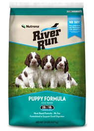 River Run Puppy.png