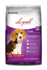 Loyall_Puppy.png