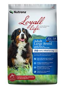 40 Loyall Large Breed Lamb and Rice copy.jpg