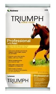 Triumph_Professional.jpg