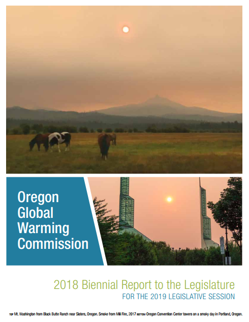 2018 OGWC Report Cover.png