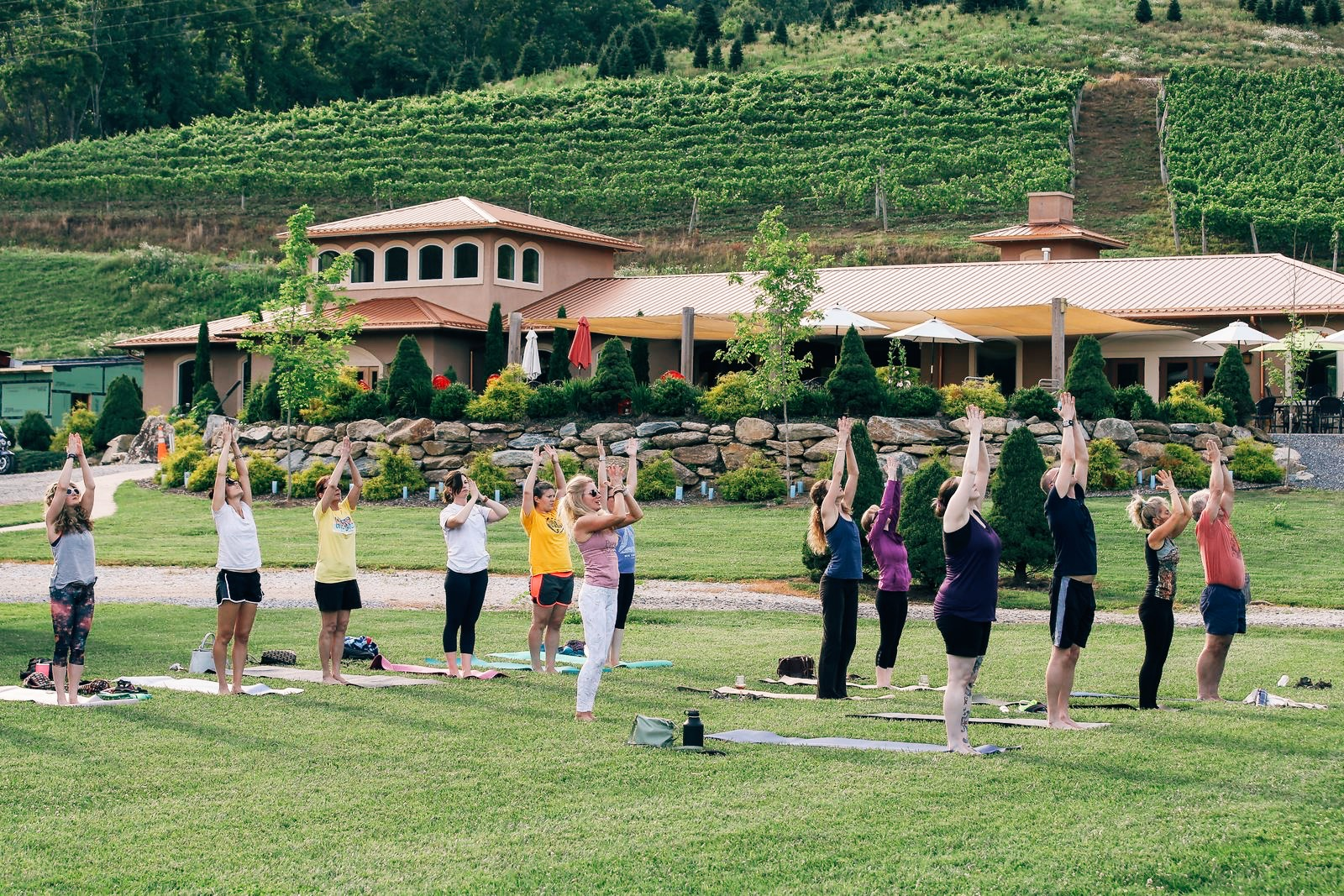 Yoga in the Vineyard.jpg