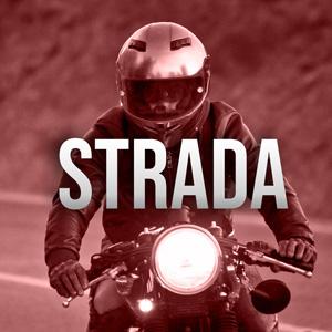 Cat_STRADA.jpg
