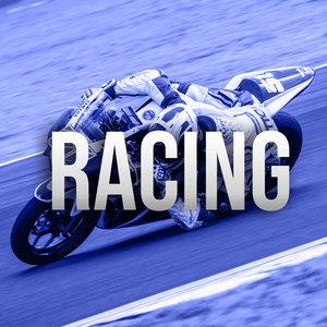 Cat_Racing.jpg