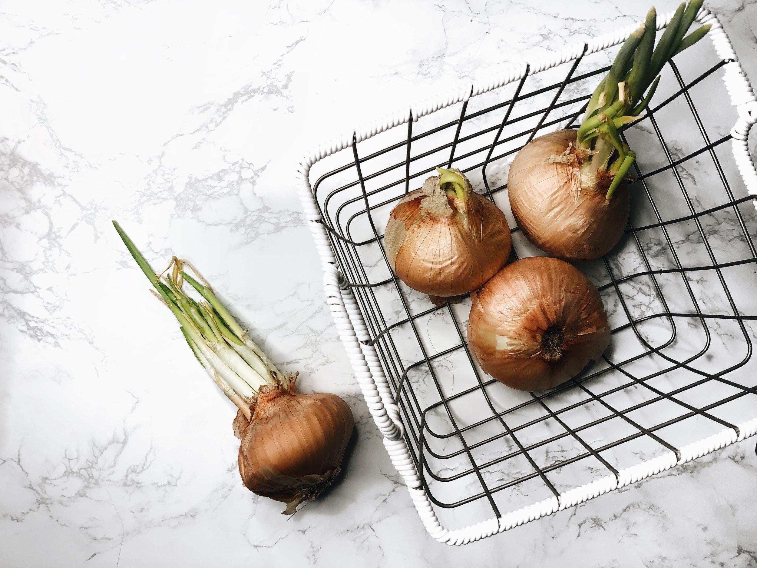 chanellecozette_onions.JPG
