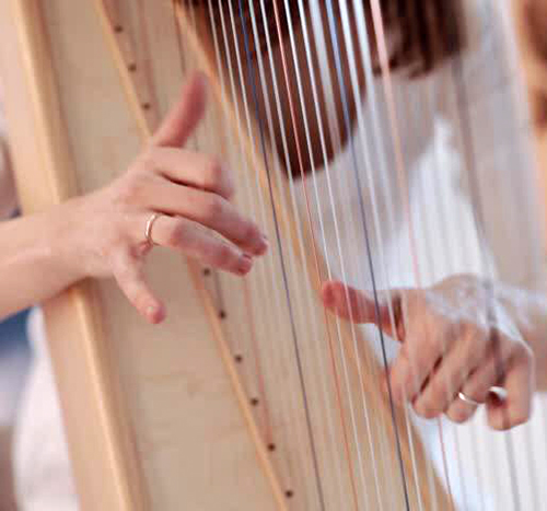 Workshops_500_467_harp_web.jpg