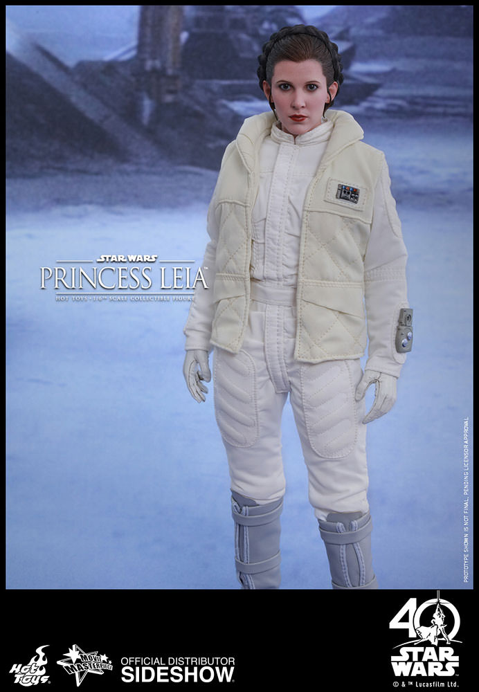 Hot Toys.MMS423. Princess Leia