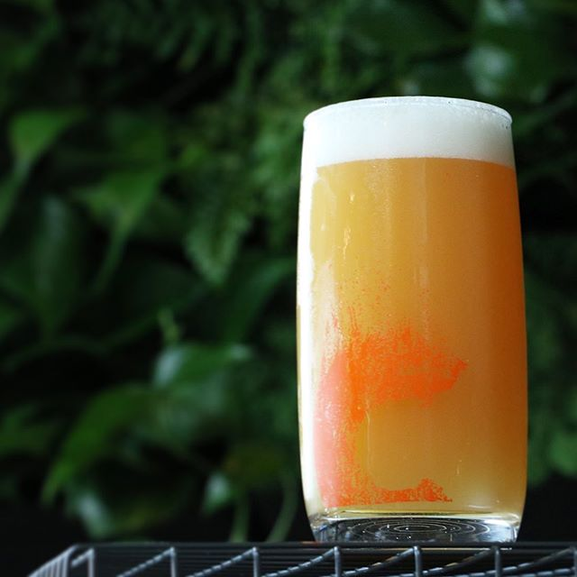 **NEW BEER ON TAP AT #CINDERLANDSWAREHOUSE** - Doug - IPA - 6.8% A PNW hop bill applied to our house hazy recipe. Packed with big, majestic aromas of doug fir goop, ponderosa forest at dusk, and a Humboldt county mountain hike. Yove never smelled so many trees in your life. Light golden and hazy. Round and crisp, finishing dry.  Simcoe, Columbus, Chinook, Cascade / Two-Row, Oat Malt, Vienna, Wheat Malt, Raw Wheat / House Kveik - On draft now down at the Warehouse - it's going to be a great weekend! #cinderlandsbeer #ipa #trees