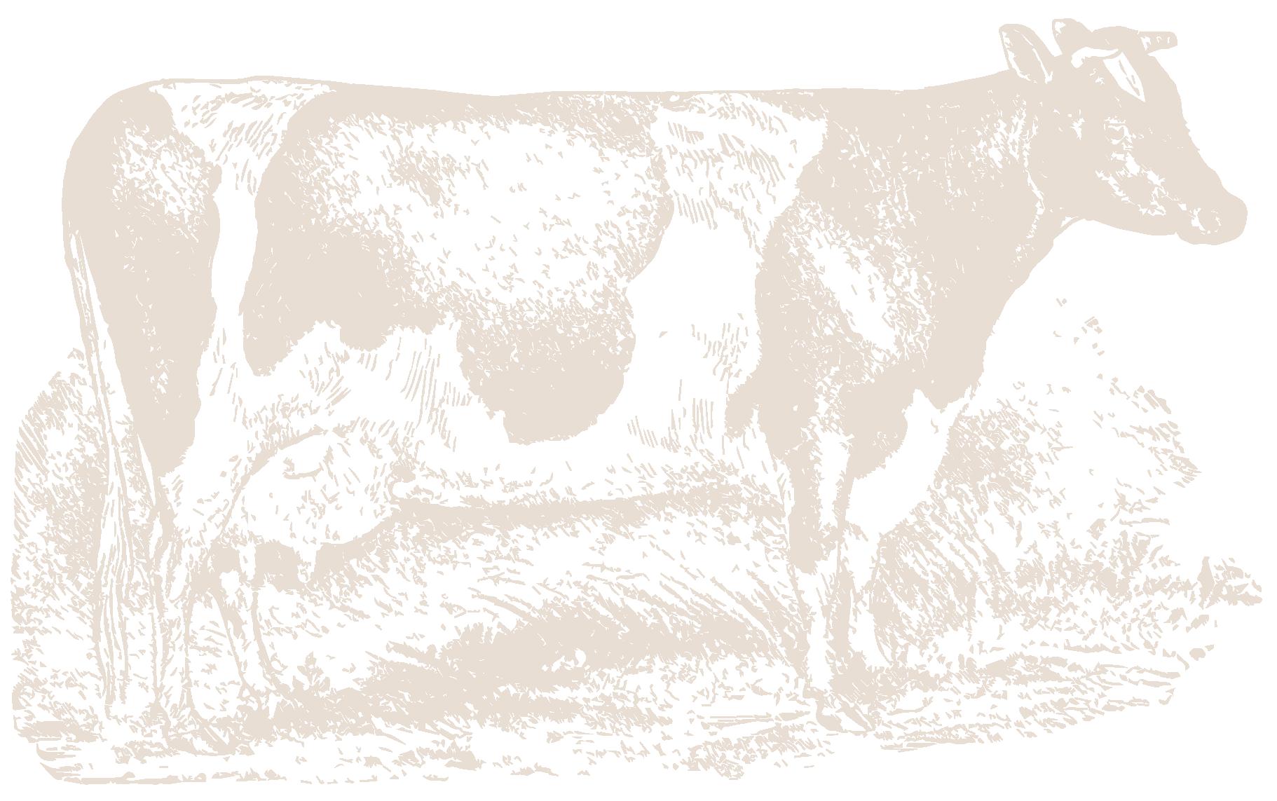 FarmingPageCow-19.png