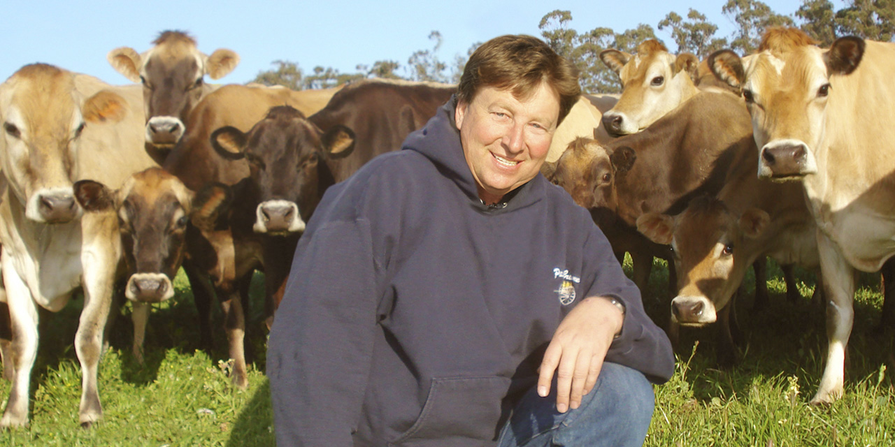 PetalumaCreameryLarry_cows_web.jpg