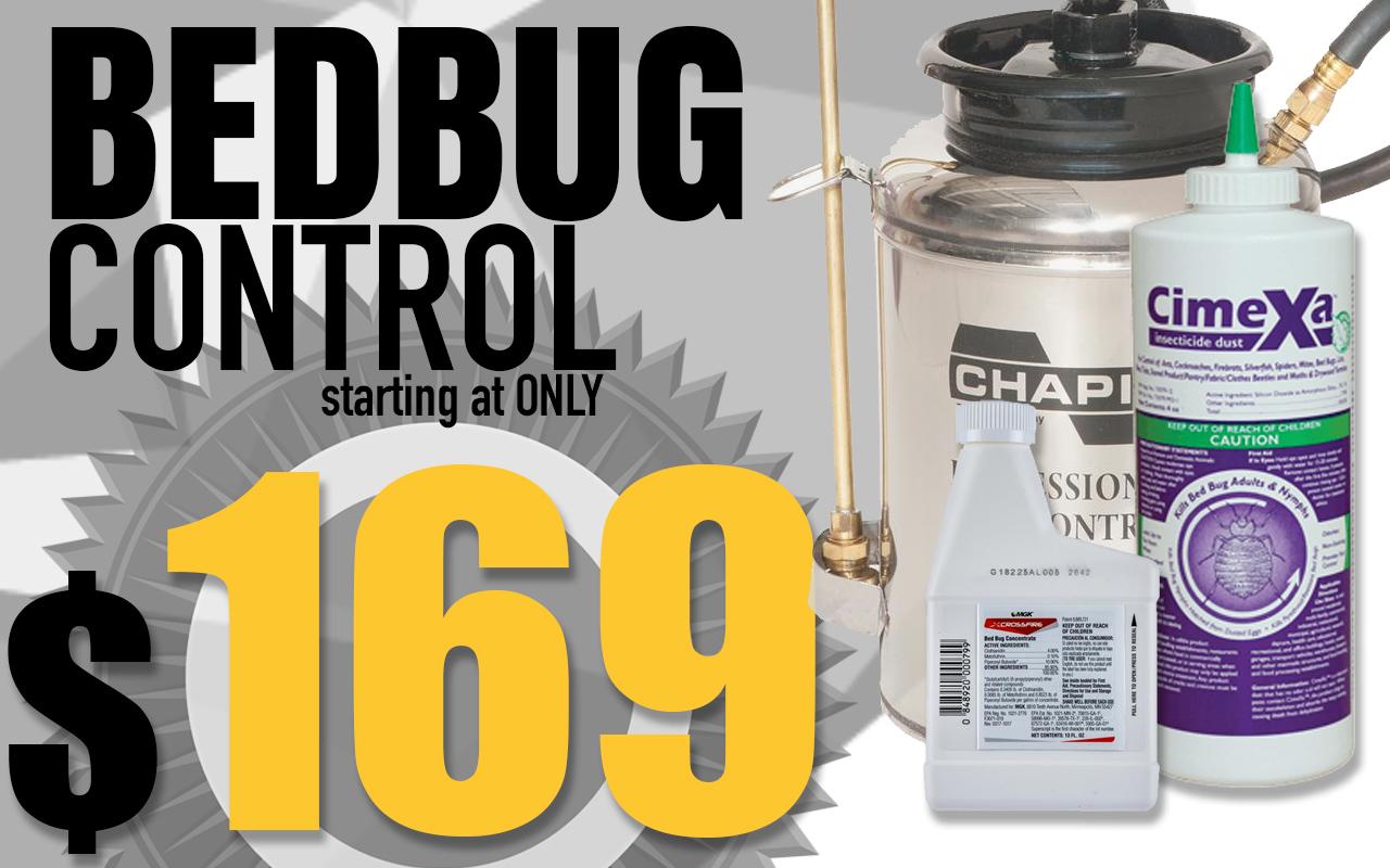 bed bug Utah