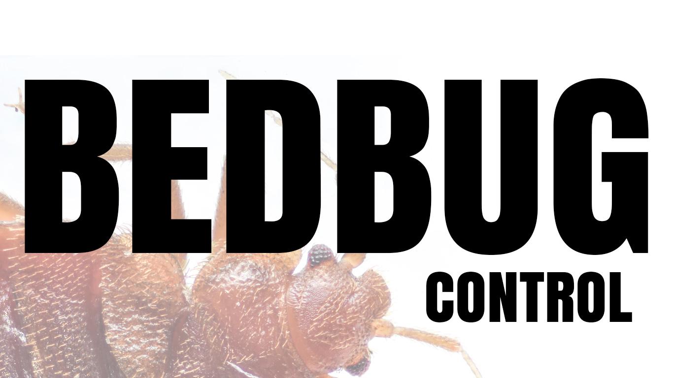 bed bug control Utah