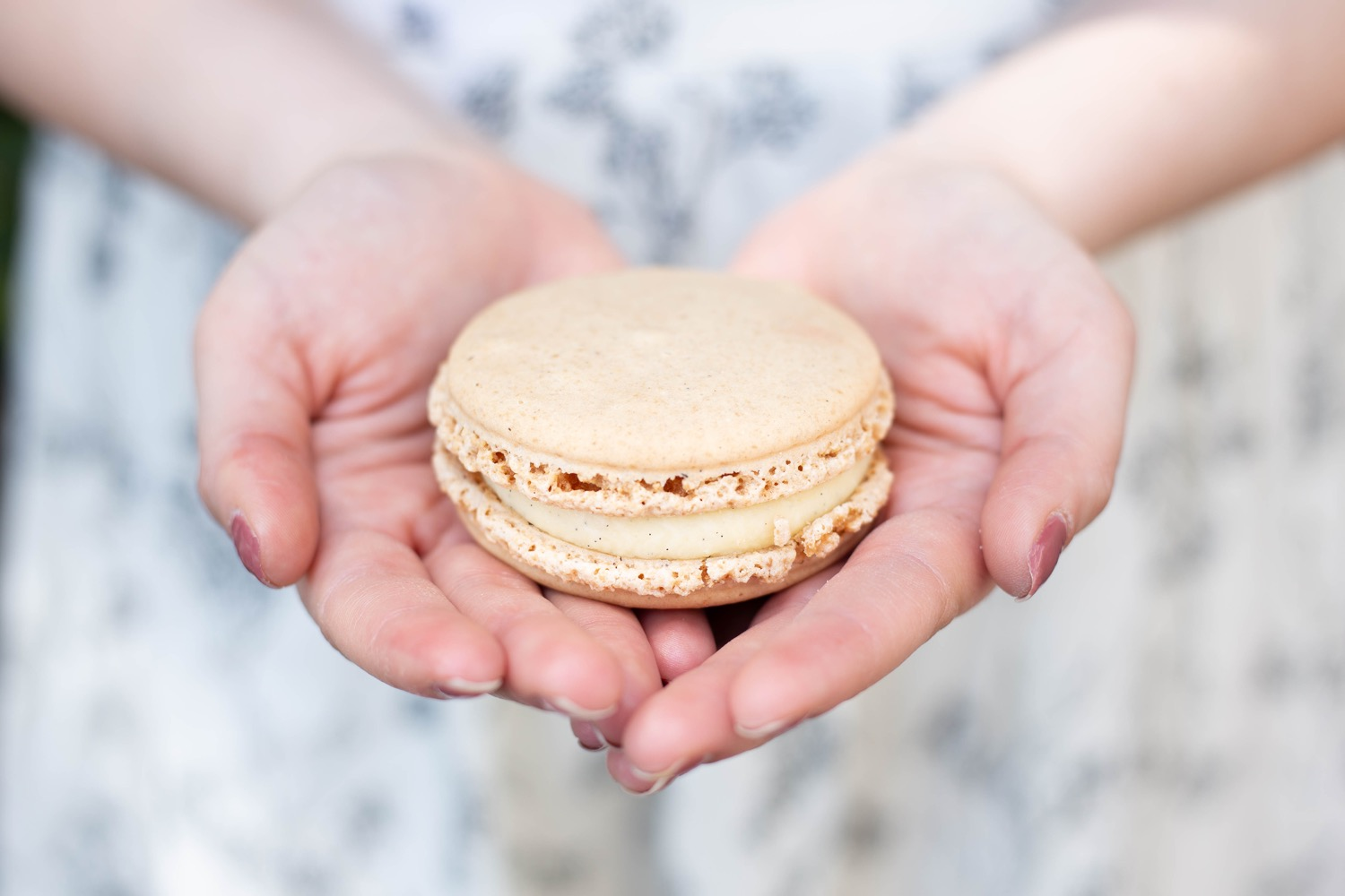Large Macaron found in Montmartre