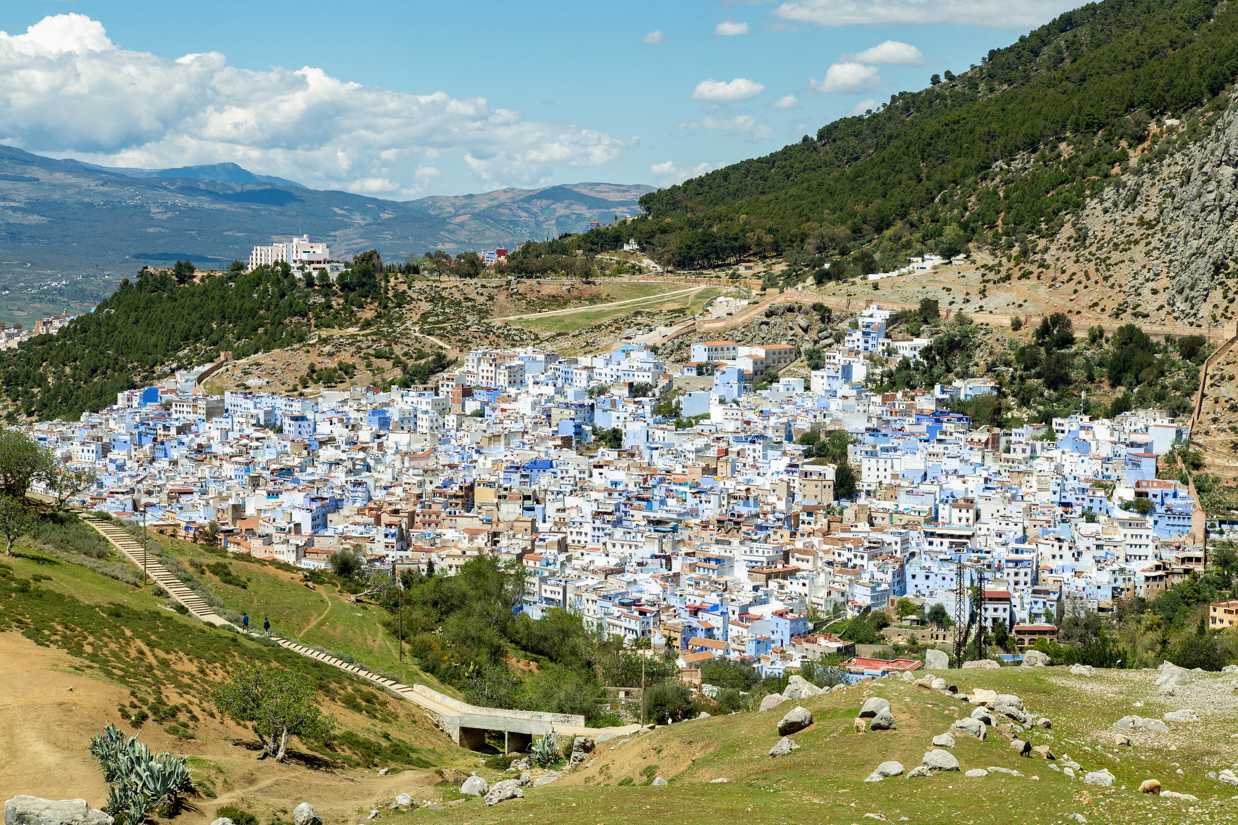 Chefchaouen from Spanish Mosque.jpg