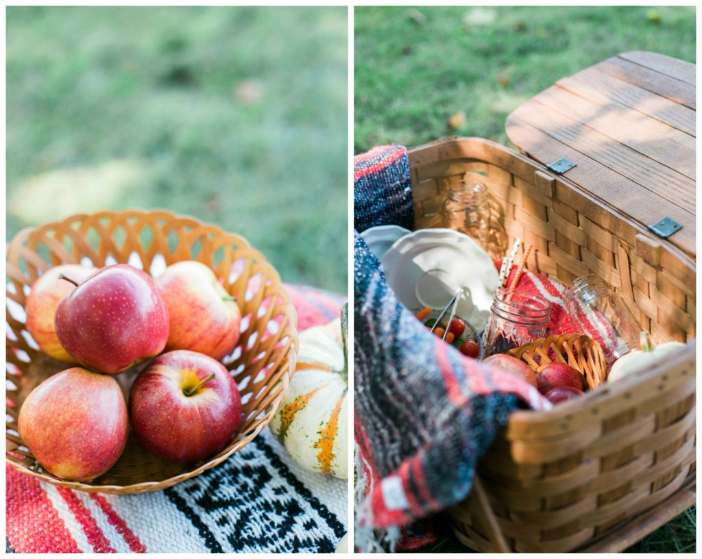 autumn picnic snack