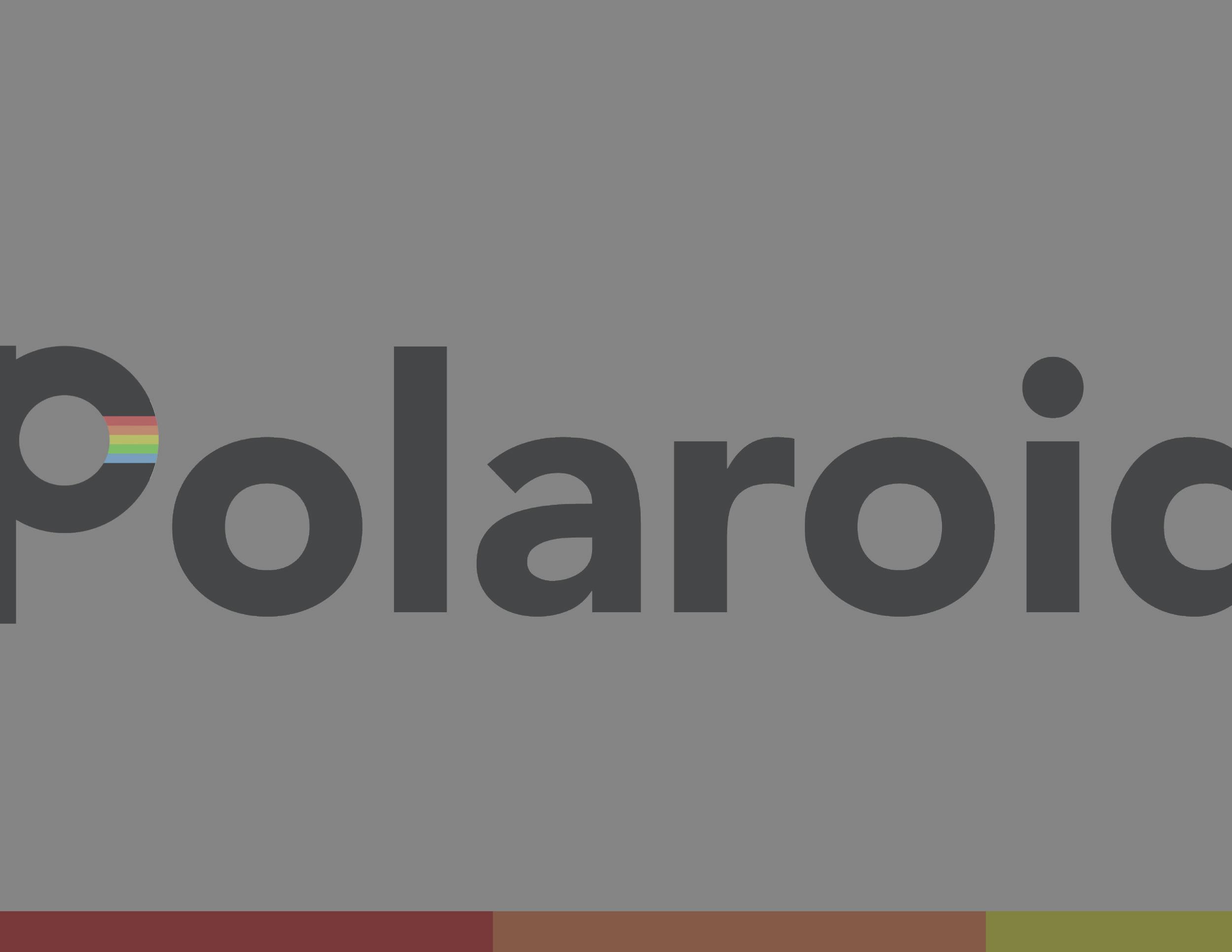 Polaroid Brand Guide 12.jpg
