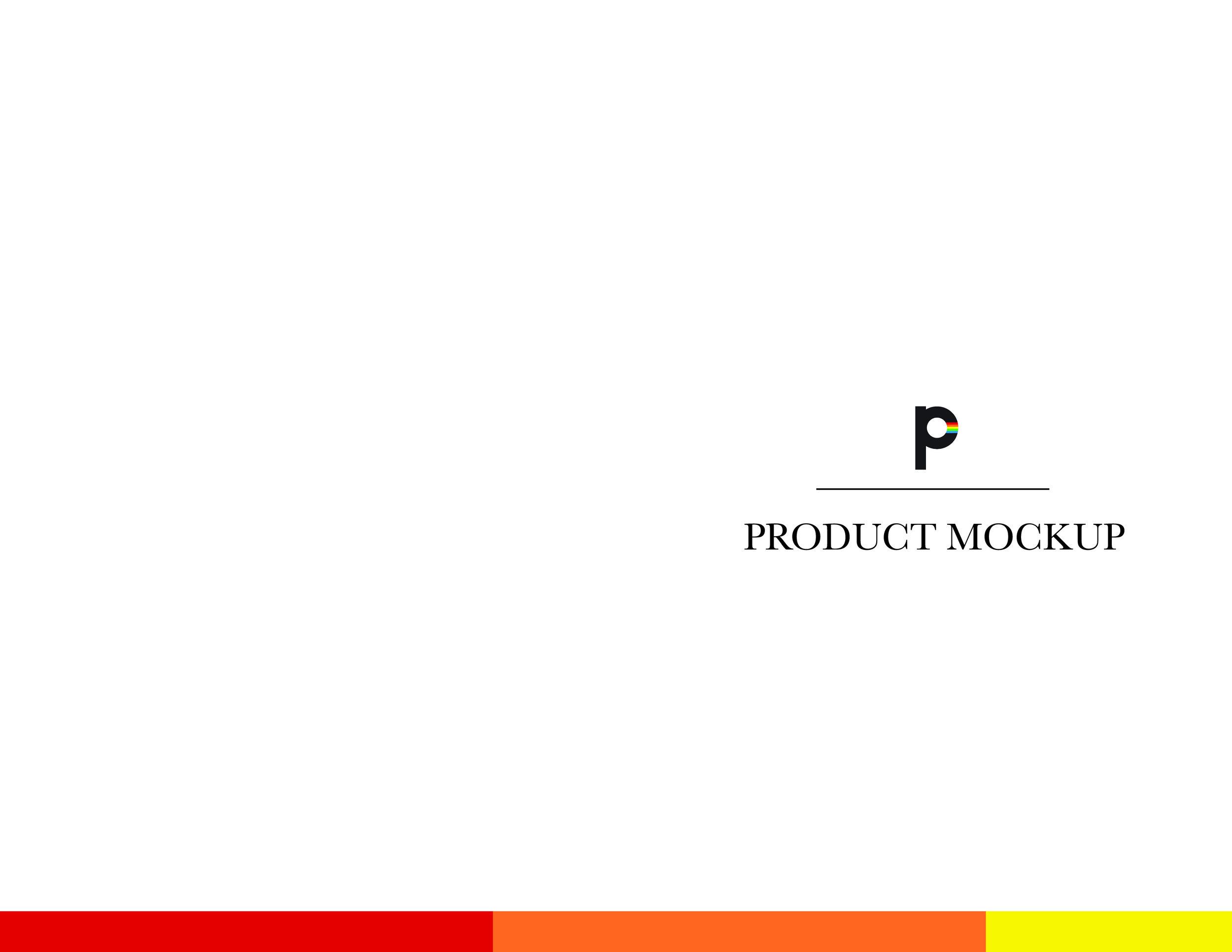 Polaroid Brand Guide 112.jpg