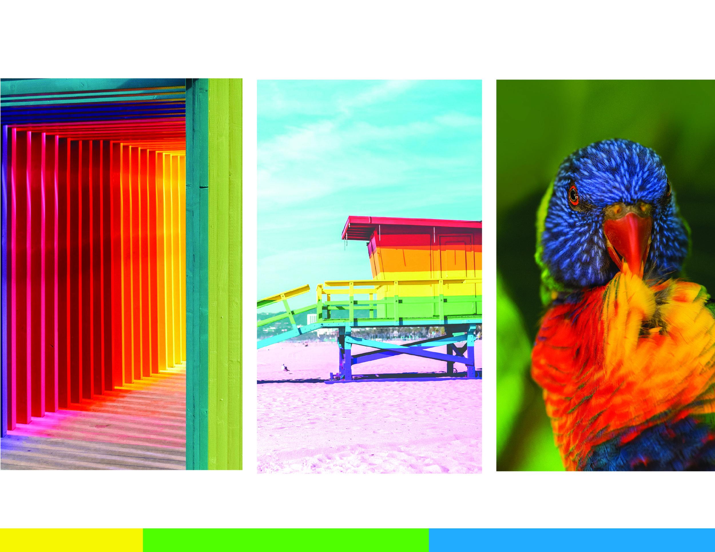Polaroid Brand Guide 121.jpg