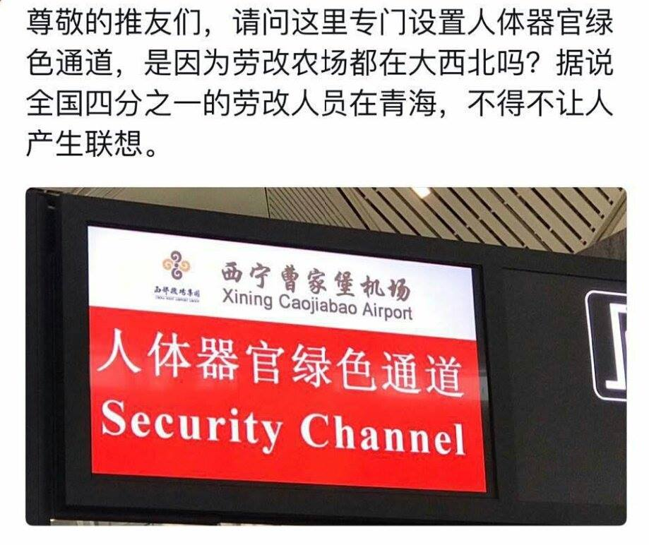"""Sign at Xining Caojiabao Airport in Xining, capital of Qinghai Province, China, which says """"fast-track channel for human organs"""" in Chinese 網友拍攝之西寧曹家堡機場「人體器官綠色通道」照片"""