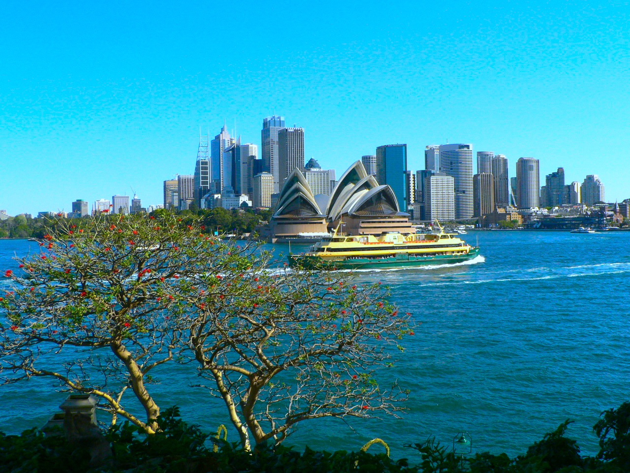 A Rare View of Sydney Opera House from Admiralty House, Sydney, taken in 2009 從悉尼的總督府看悉尼歌劇院,攝於2009年。