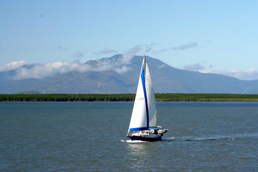 白帆是我的最愛。陽光下點點閃爍,如夢如真。