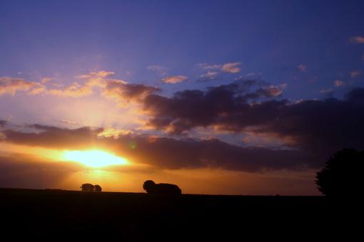 到了這時,已經在與光線賽跑了。太陽將落,就讓我的 圖片遊記 也定格於這樹與農舍的剪影之中吧!