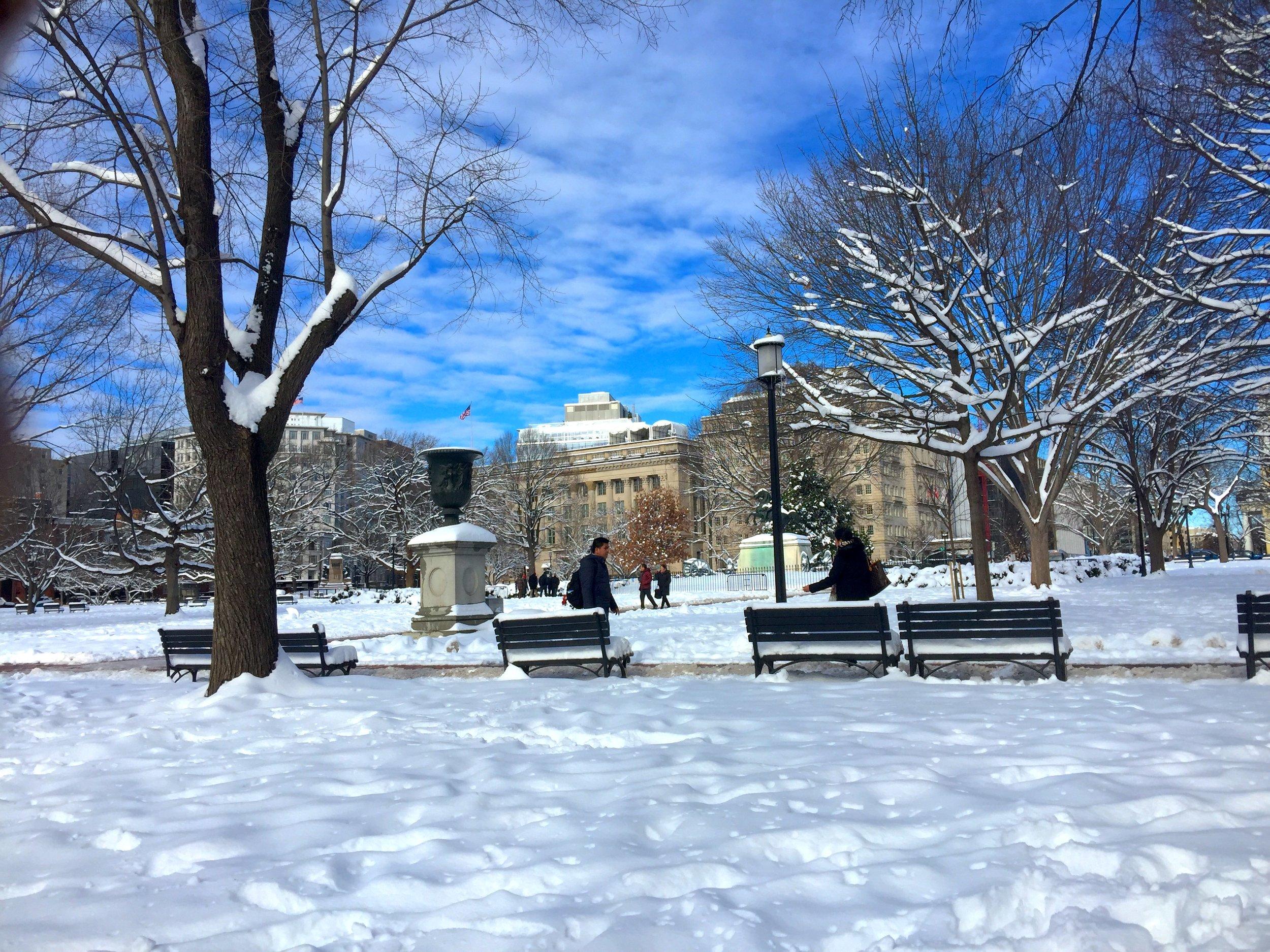 Lafayette Square opposite the White House, on 1/14/2019, by Jennifer Zeng 曾錚攝於白宮對面Lafayette广場。2019年1月14日