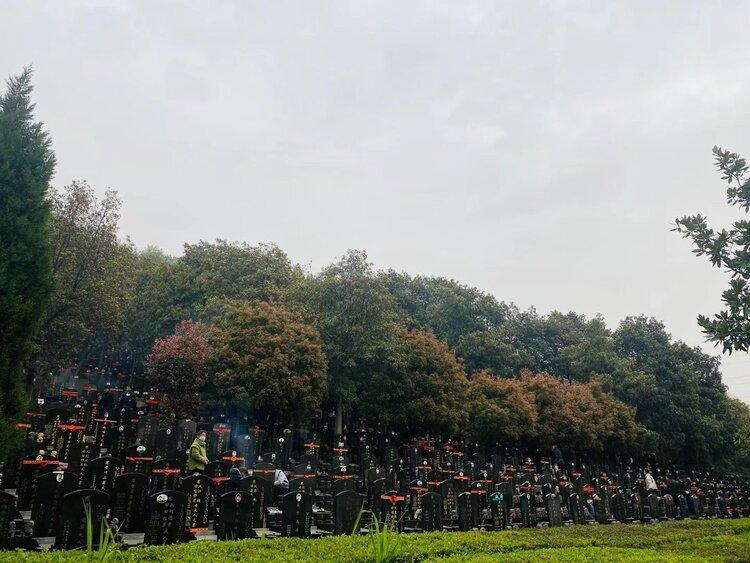A new cemetery in Wuhan 武漢一處新增的公墓