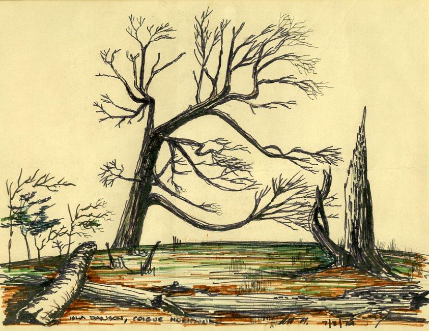 Coigüe Moribundo, de Miguel Lawner, 1974 ( fuente )
