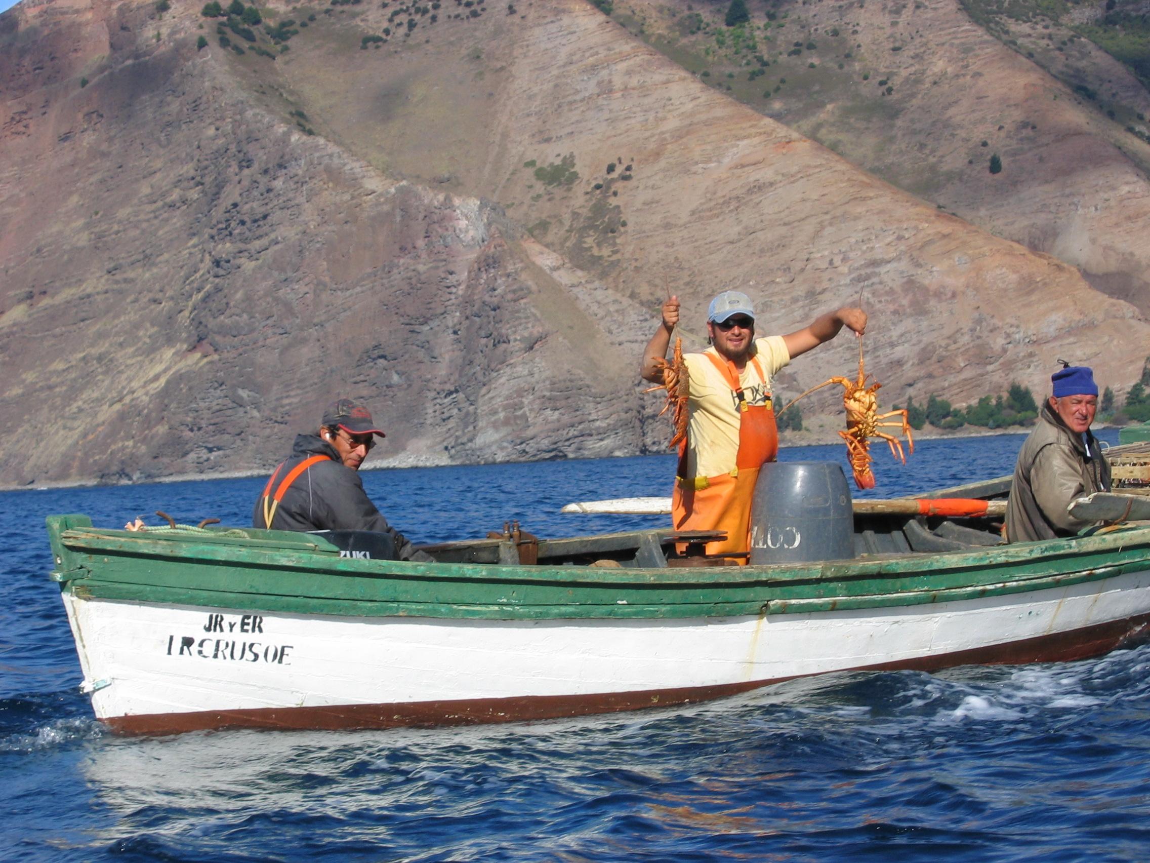 Chile, Archipiélago Juan Fernández. Un pescador con dos langostas,  por Serpentus, 2005 ( fuente )