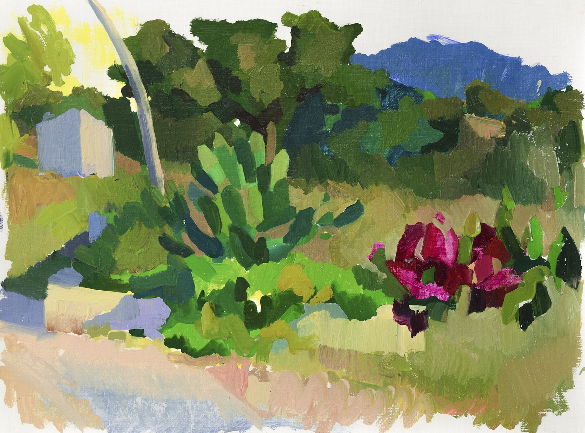 "View from the Studio, Evoramonte,   Oil on Paper, 12"" x 16,"" 2014.  Private Collection."