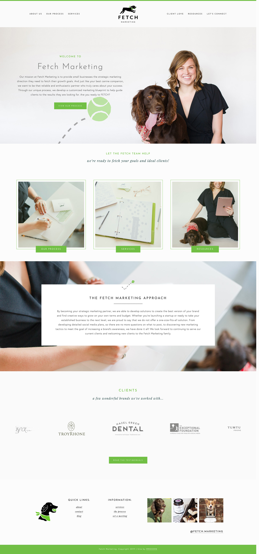 fetch-marketing-website-design.jpg