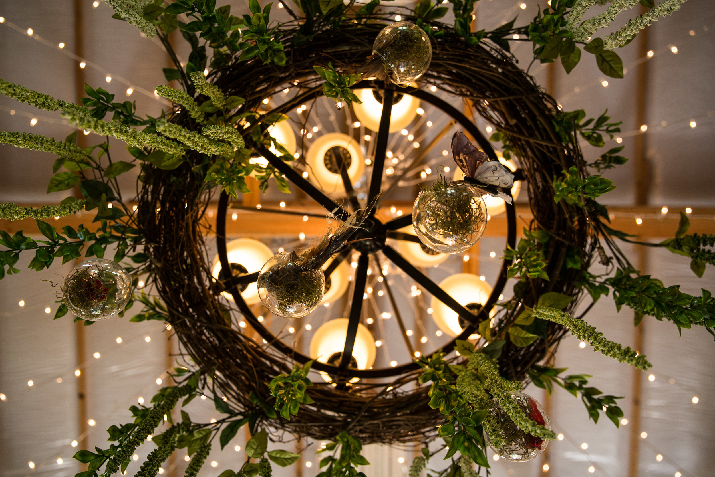 Lansing Michigan Wedding Chandelier from Below_Tania Howard Photography.jpg
