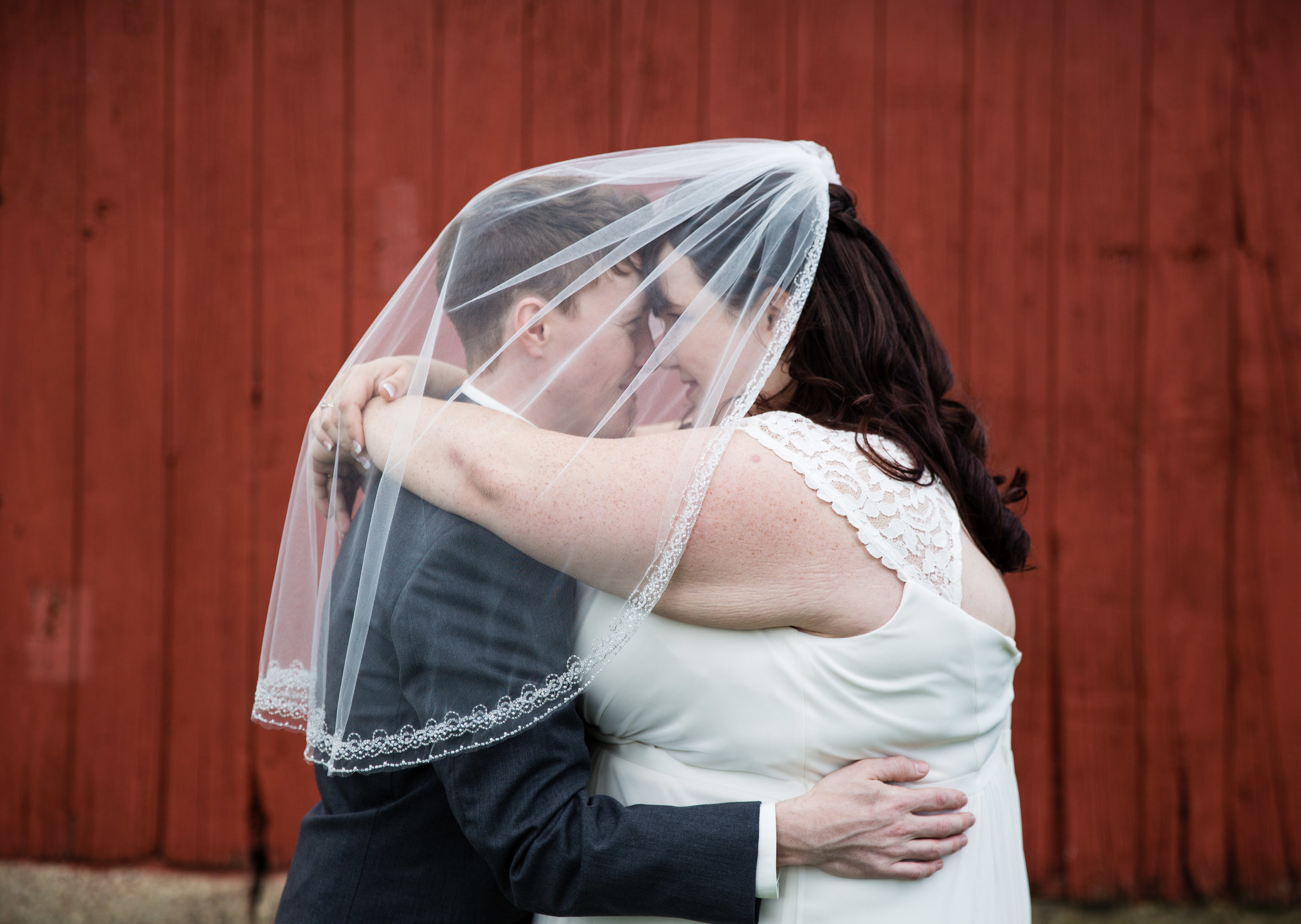 Lansing Michigan Bride and Groom Under Veil_Tania Howard Photography.jpg