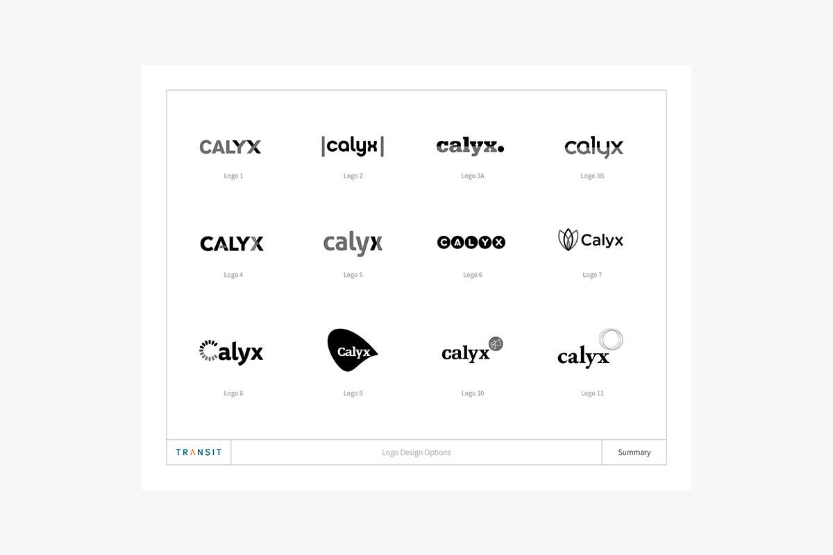 Calyx-6.jpg