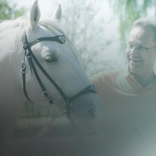 Stellen Sie sich - die Tiefe der Beziehung vor, die sich entwickelt, wenn Sie eine Arbeitsweise mit Ihrem Pferd finden, die es versteht und die ihm Spass macht. Eine Arbeitsweise, die Sinn macht, die ihm ein gutes Gefühl vermittelt und die in ihm die Lust auf den nächsten Ritt weckt.
