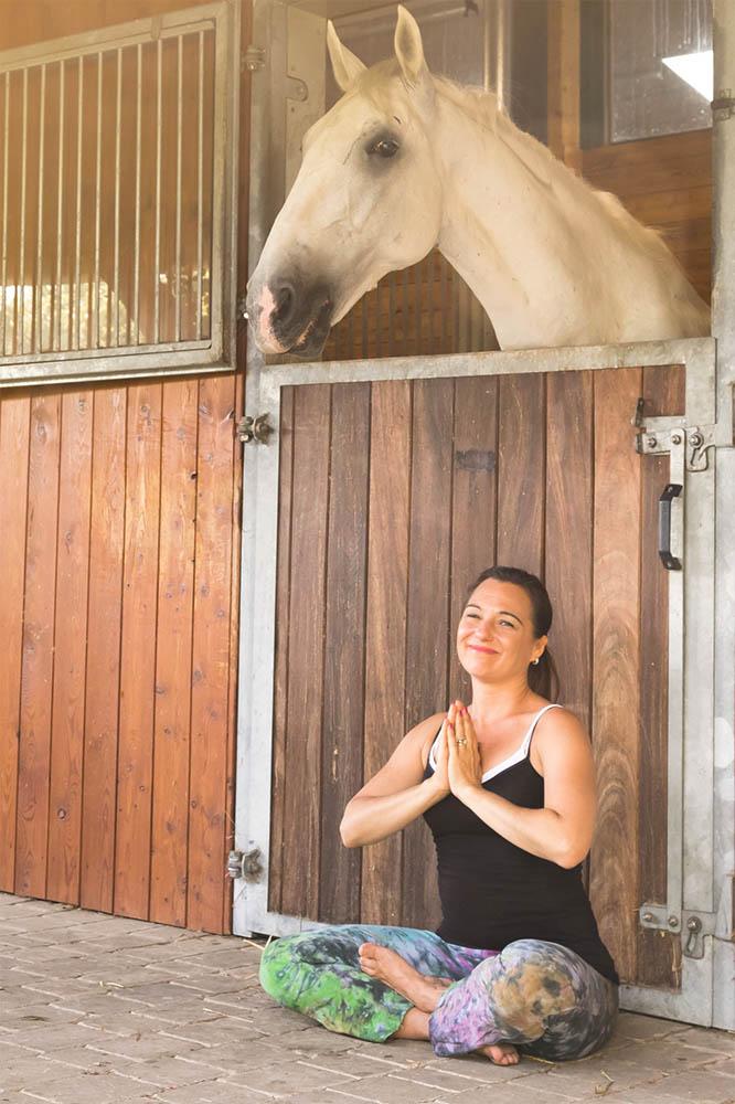 Hallo. - Ich bin Shana Ritter. Ich bin eine Dressurausbilderin, die einen alternativen Weg bei der Arbeit mit Pferden und Reitern beschreitet. Ich helfe Reiterinnen wie IHNEN, die auf eine unterstützende, bestätigende und erfüllende Art und Weise lernen wollen.Ich bin die Ehefrau, beste Freundin und Miteigentümerin dieses verrückten Lebens-und Geschäftsprojekts, das wir Ritter Dressage nennen. Ich lebe in Deutschland mit Thomas (link) und unseren 2 Kindern. Ich bin Trägerin der USDF Bronze und Silber Medaille und ich bin erfolgreich bis Intermediare I auf Turnieren gestartet. Ich reite seit 33 Jahren, davon die letzten 21 Jahre ausschliesslich Dressur. Ich gehöre meinen 3 Pferden und einer Katze. Ich habe andere Interessen neben dem Dressurreiten, wie z.B. Yoga, Zen Meditation, holistische Gesundheit und Wellness, selbstbestimmte Geburt, Kunst, Musik, Geschäftsaufbau und -entwicklung, sowie Attachment Parenting.