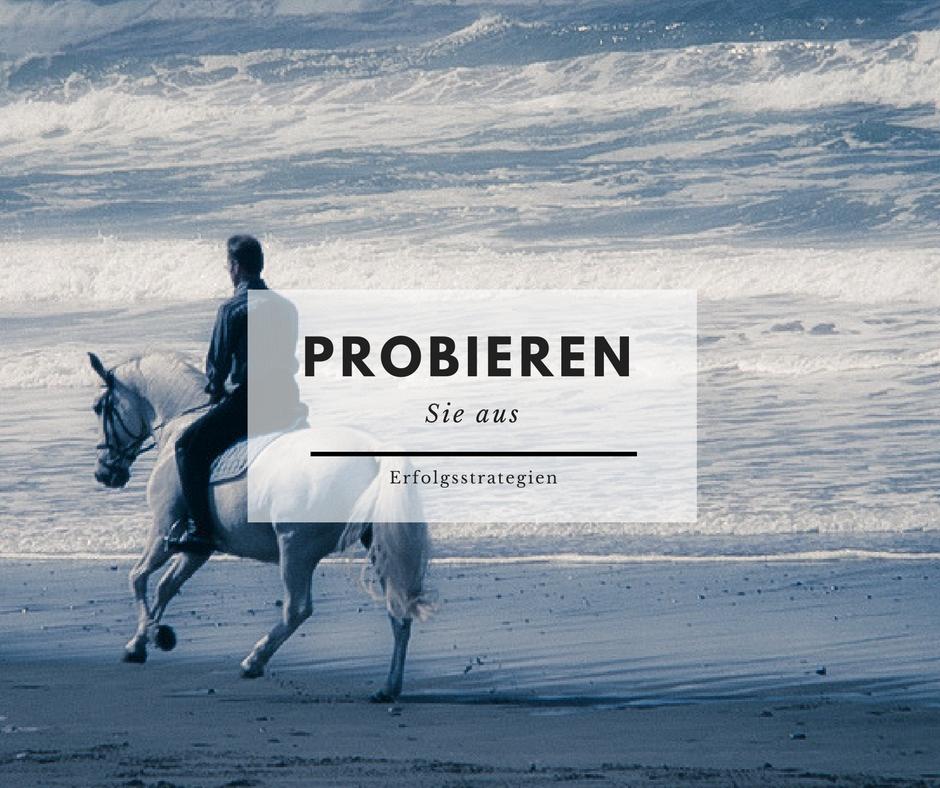 7. - Probieren Sie etwas, das Sie bei einem Pferd beobachtet haben, mit anderen Pferden und mit Schülern aus