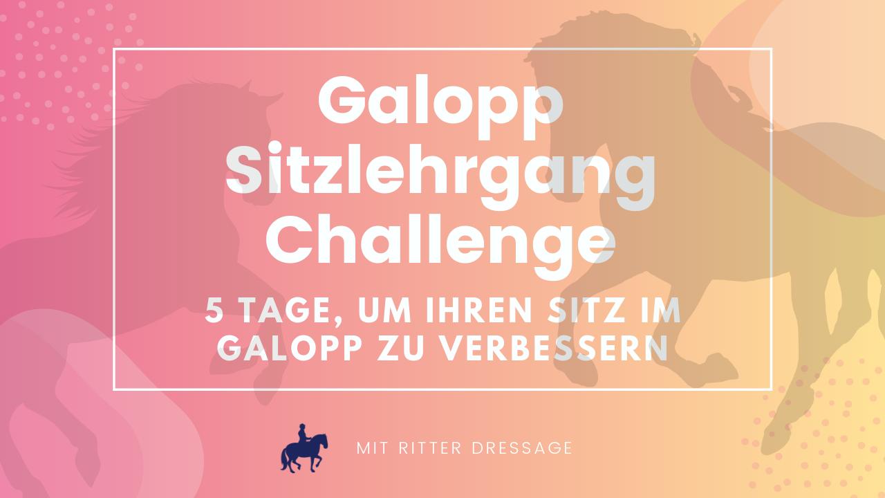Galopp Sitzlehrgang Challenge .png