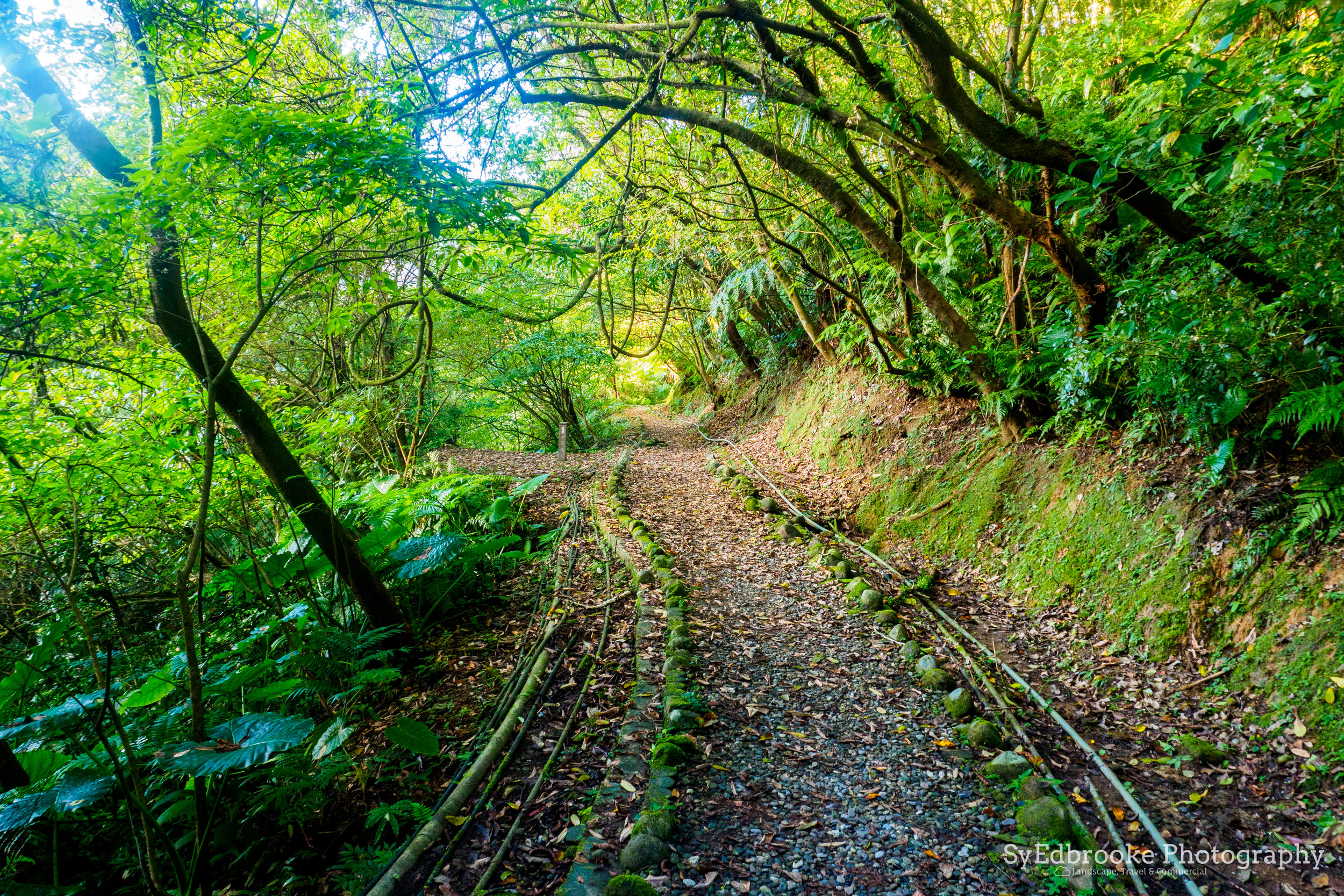 The old railway track. f7.1, ISO 1600, 1/6, 24mm