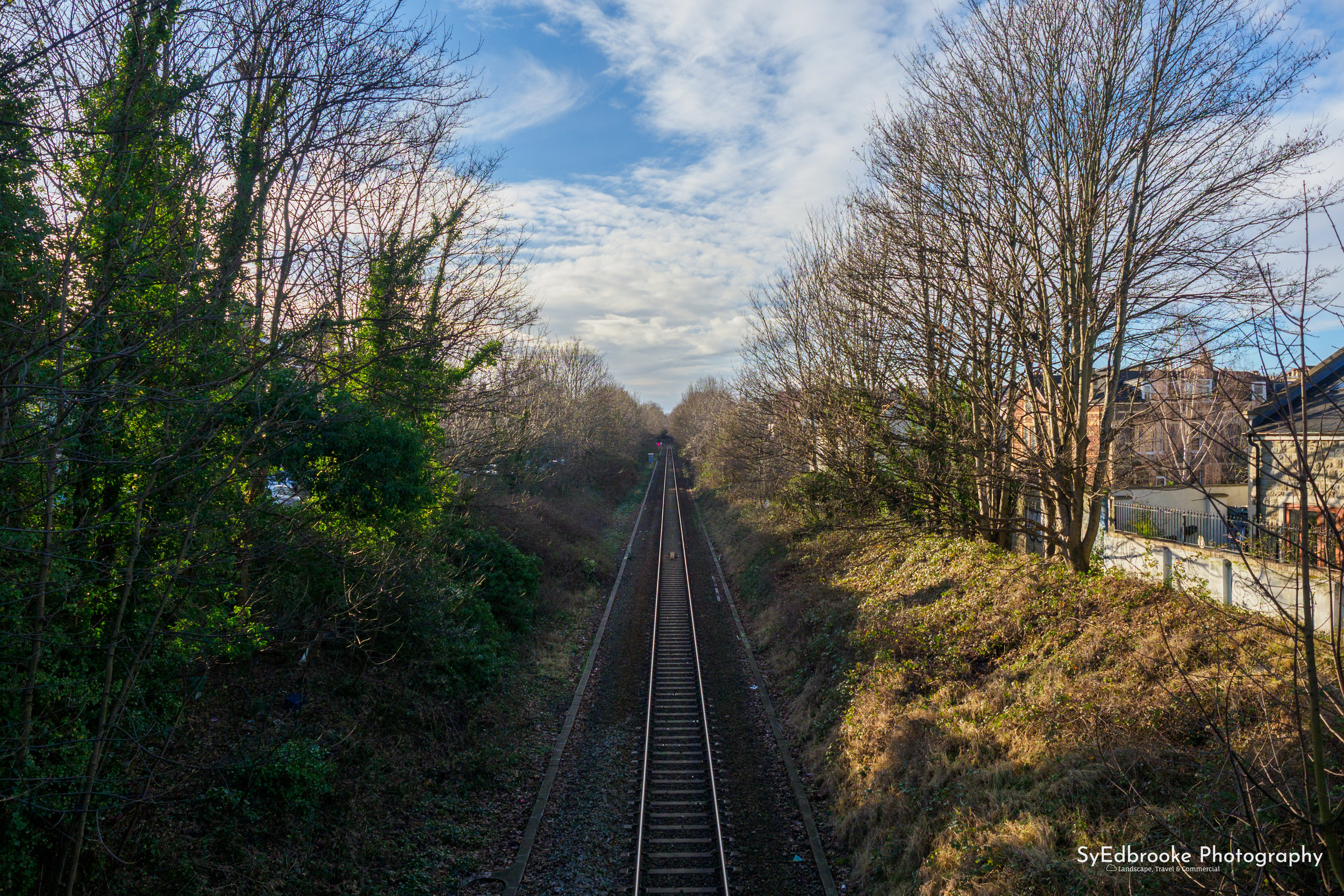 The local railway in Redland. 24mm, ISO 200, f 2.8, 1/2000