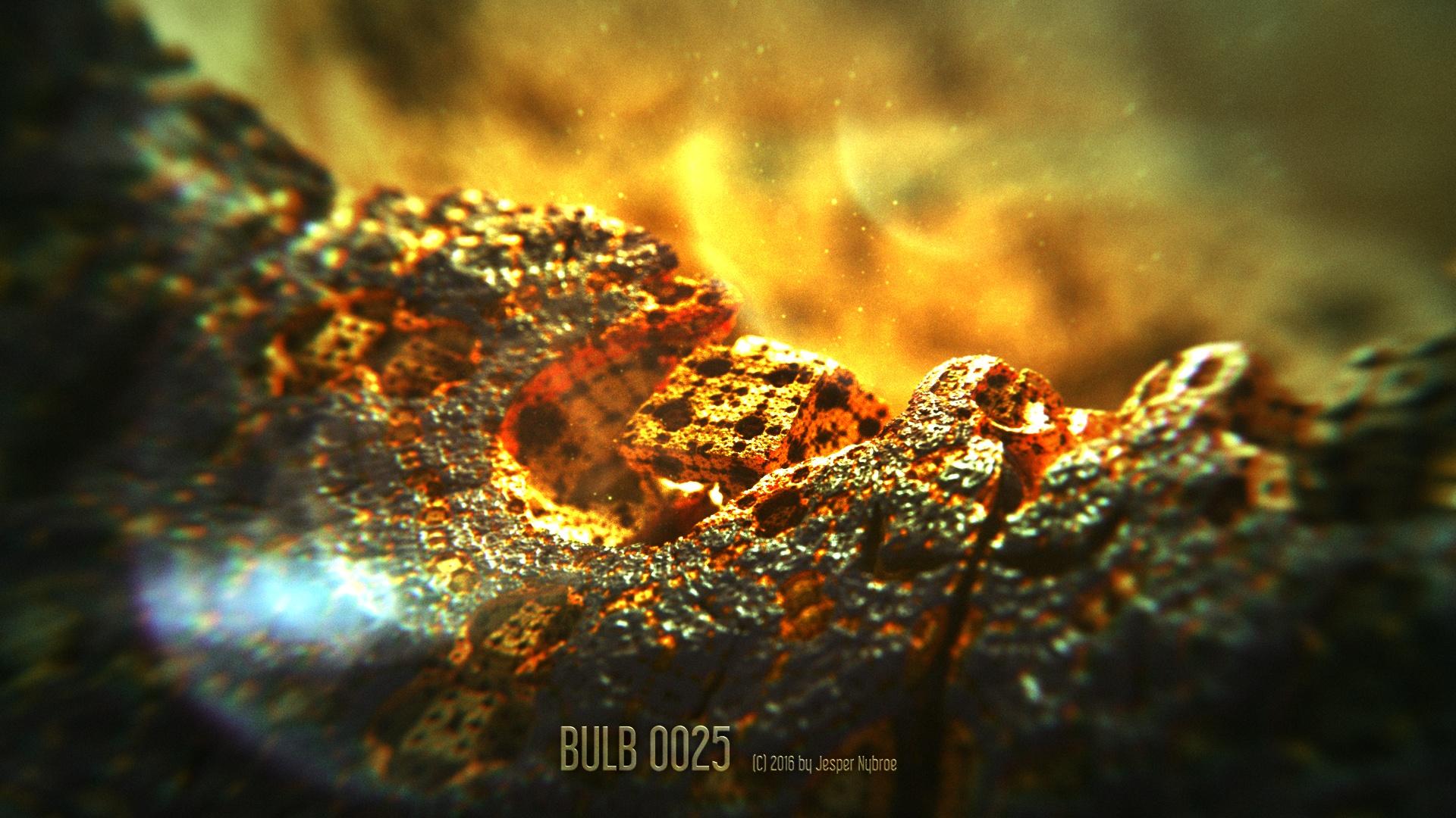Bulb_0025.0001.jpg