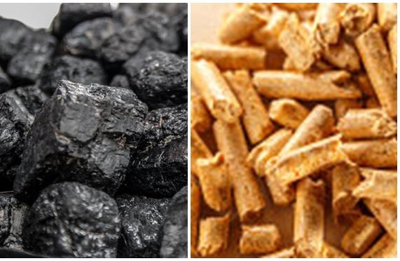 coal-biomass.jpg