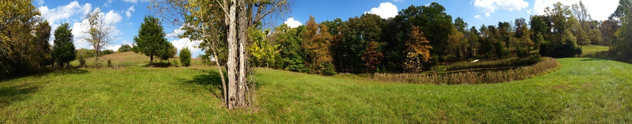 Another panoramic shot in a Kentucky horse pasture.
